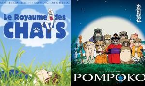 pompoko et royaume des chats en blu-ray ghibli