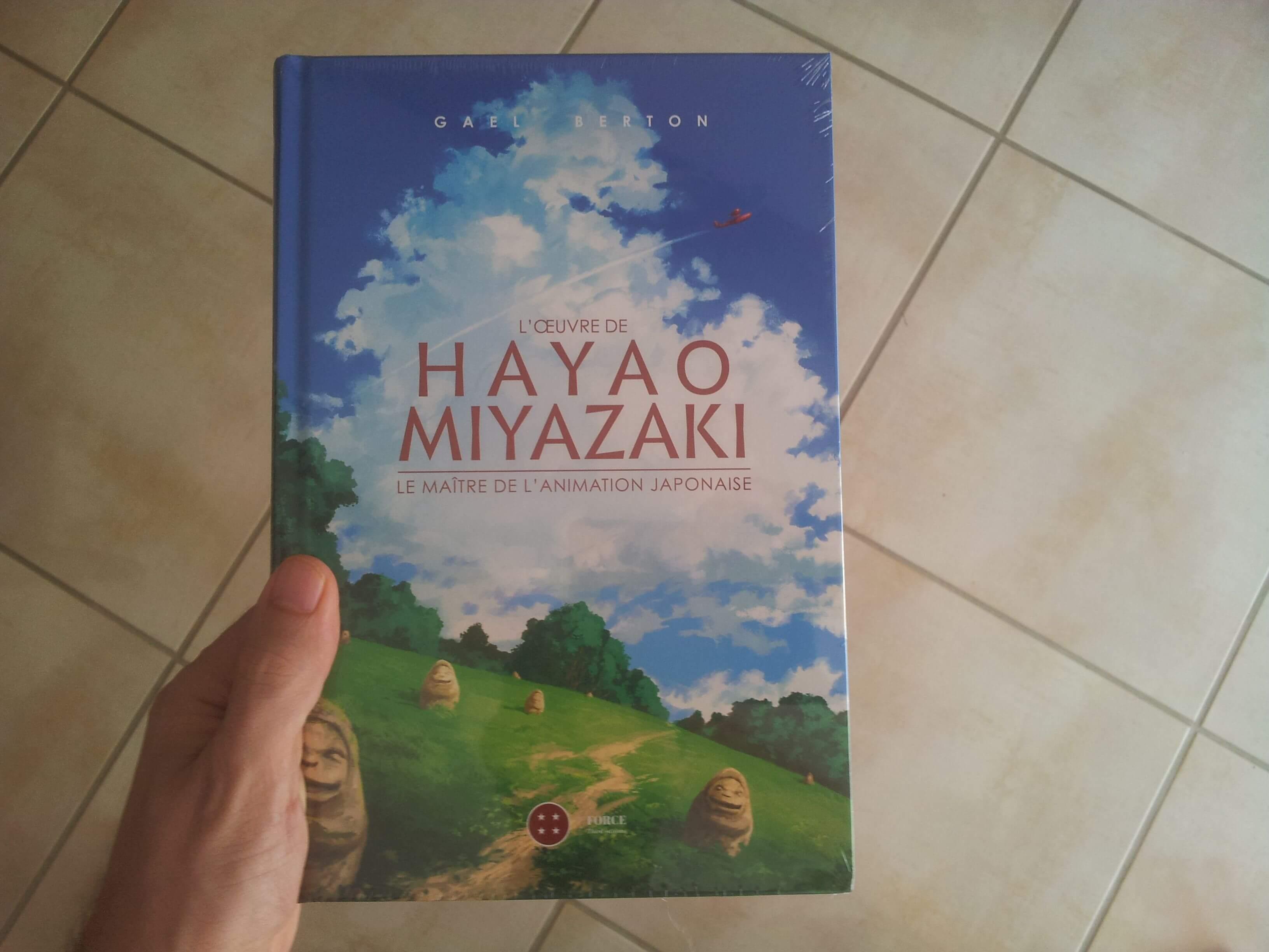 Maitre De L Oeuvre livre : mon avis sur l'œuvre de hayao miyazaki: le maître de