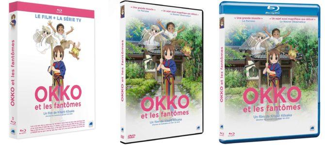 Sortie des DVD / Blu-ray et collector du film Okko et les fantômes le 3 avril